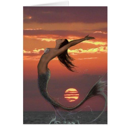 sunset dance card