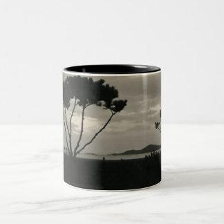sunset desert mug