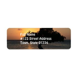 Sunset Divi Divi Tree Label
