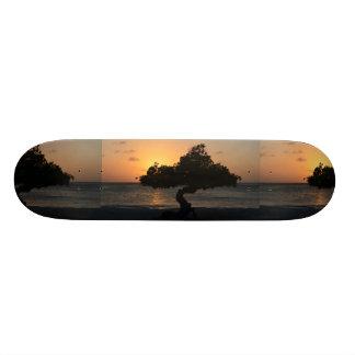 Sunset Divi Divi Tree Custom Skateboard