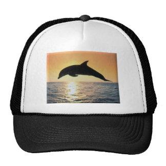 Sunset Dolphin Trucker Hats