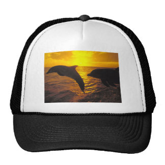 Sunset Dolphins Mesh Hat