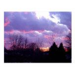 Sunset Dream Postcard