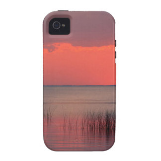 Sunset Dreamscape Florida iPhone 4/4S Cases