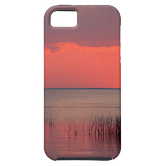 Sunset Dreamscape Florida iPhone SE/5/5s Case