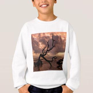Sunset Driftwood Beach Sweatshirt