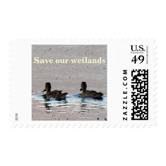 Sunset Ducks Stamp