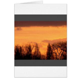 Sunset Dusky Sky Over Trees Card