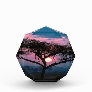 Sunset East African Award