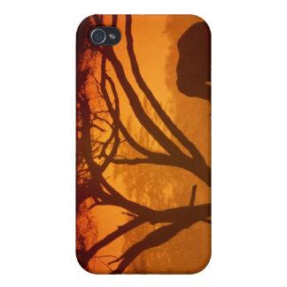 Sunset Elephant iPhone 4 Case