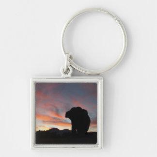 Sunset elephant keychain