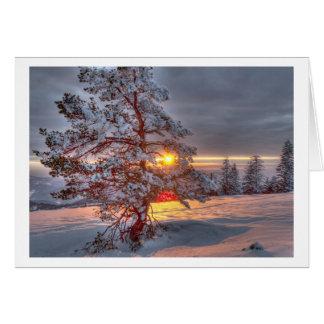 Sunset en Black the Forest Tarjeta De Felicitación