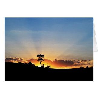Sunset Farm Londrina Card