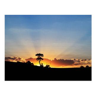 Sunset Farm Londrina Postcard