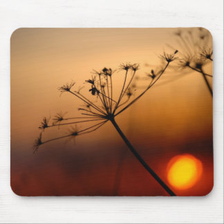 Sunset Field Flowers Mouse Pad
