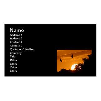 Sunset Flight Business Card