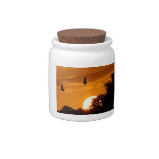 Sunset Flight Candy Jars