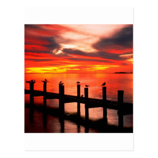 Sunset Fort Myers Prom Florida Postcard