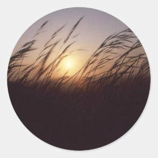 Sunset grasses.jpg classic round sticker