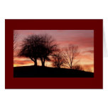Sunset Greeting Card-Blank