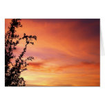 Sunset Greeting Cards