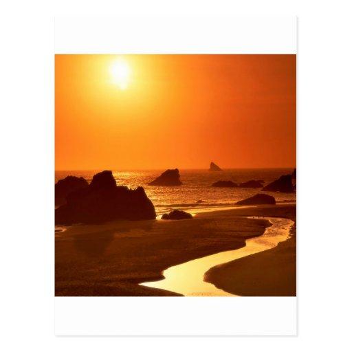 Sunset Harrisbrookings Oregon Postcard