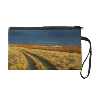 Sunset highlights the red bark of bushes wristlet purse