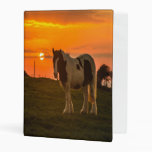 Sunset Horse Mini Binder