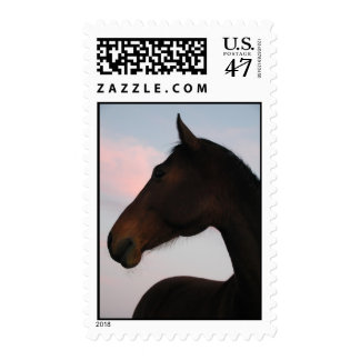 sunset horse stamps