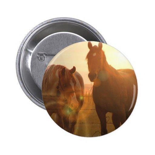 Sunset Horses  Button