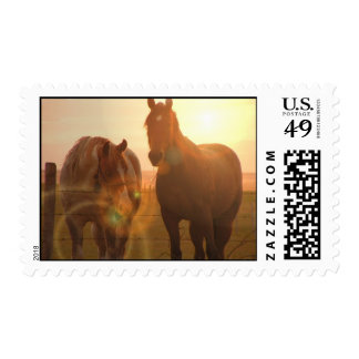 Sunset Horses  Postage Stamp