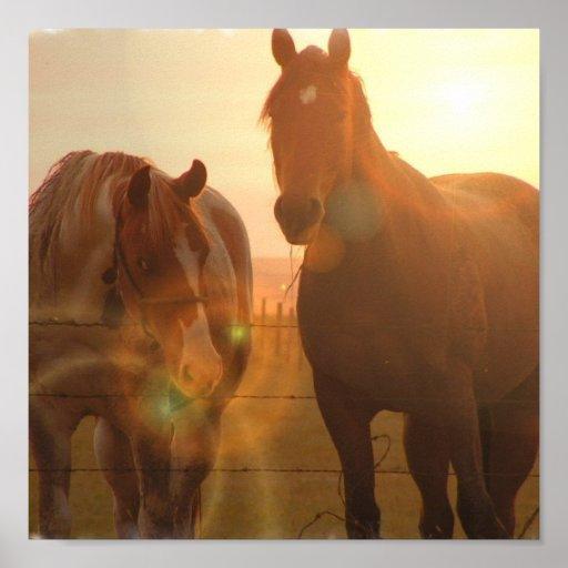 Sunset Horses  Poster