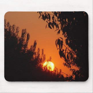 Sunset in an Almond Orchard Mouse Pad