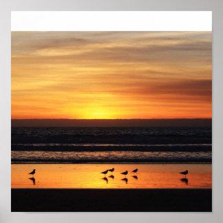Sunset in California Poster