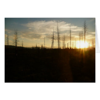 Sunset in Eastern Oregon Card