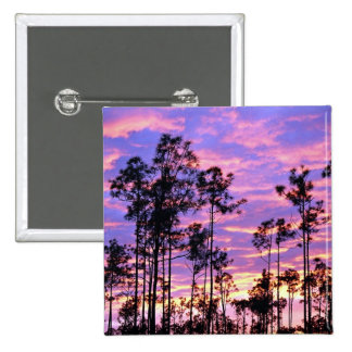 Sunset in Everglades National Park, Florida, U.S.A Pinback Buttons