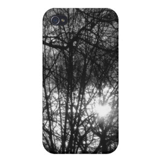 Sunset in Forest iPhone 4/4S Cover
