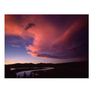 Sunset in Hayden Valley Postcard