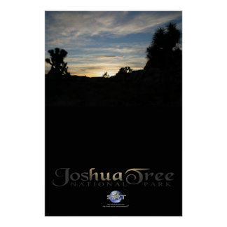 SUNSET IN JOSHUA TREE POSTERS