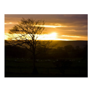 Sunset In North Yorkshire Postcard