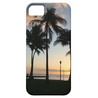 Sunset in Paradise Case