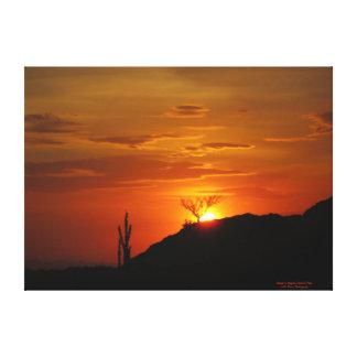 Sunset in Saguaro National Park Canvas Print