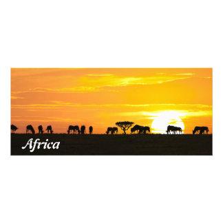 Sunset in Serengeti Invites