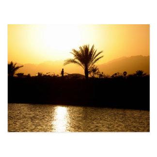 Sunset in Sharm el Sheikh, Egypt Postcard