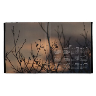 Sunset in the Background; 2013 Calendar iPad Folio Cover