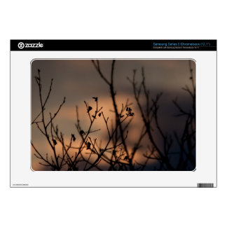Sunset in the Background Samsung Chromebook Decals
