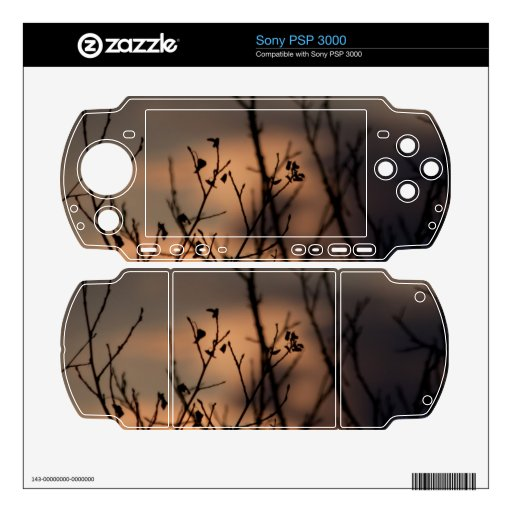 Sunset in the Background Skin For Sony PSP 3000