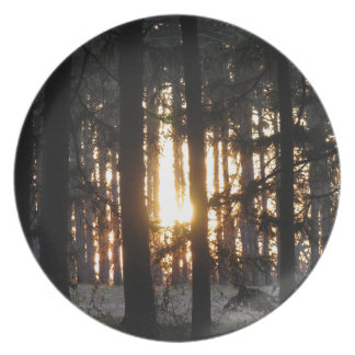 Sunset in the forest party plate