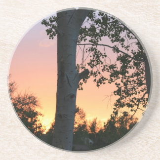 Sunset in the Trees Coaster
