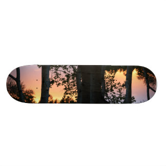 Sunset in the Trees Skateboard